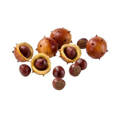 Deko-Kastanien in verschiedenen Größen, 12-teilig