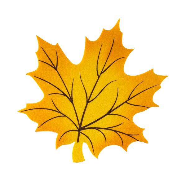 Filz-Deckchen in schönem Herbstlaub-Design