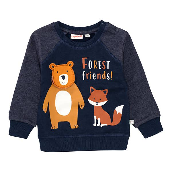 Baby-Jungen-Sweatshirt mit fröhlichem Druck